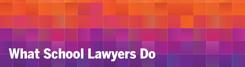 "a gradient of orange/purple squares, with the text ""what school lawyers do"""